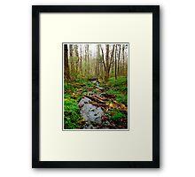 Nature's Serenity Framed Print