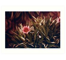 Redscale Flower Art Print