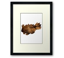 Zigzagoon used Tail Whip Framed Print