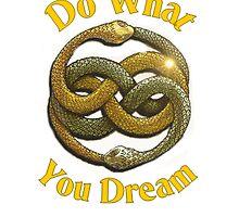 Do What You Dream by melannbarrett