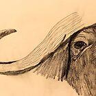 Cape Buffalo by aprilann
