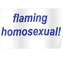 Flaming Homosexual! Poster