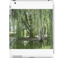 Through The Willow Curtain iPad Case/Skin