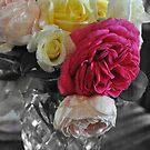 Autumn Roses by Julie Sherlock