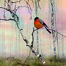 Bullfinch Pillow by Igor Zenin