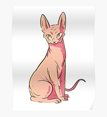 Hairless Cat Poster