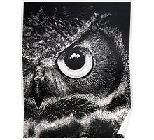 Owl Eye Poster