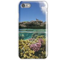 Corals underwater and reef islet with a seabird iPhone Case/Skin