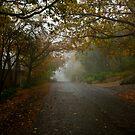 Golden Grove by Tamarama72