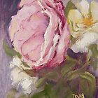 Shabby Pink Rose by Jaana Day