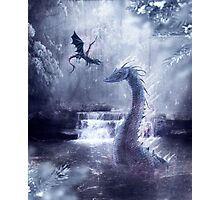Ice Dragons Photographic Print