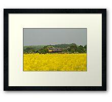 Stow Park Framed Print