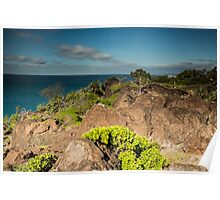 Double Island Point Headland Poster