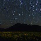 Mt Barney Star Trails by Stephen Waller