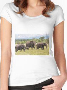 African Bush Elephants (Loxodonta africana) Women's Fitted Scoop T-Shirt