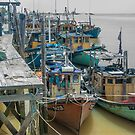 Fishing Fleet by Werner Padarin