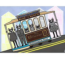 San Francisco Trolley Cats Photographic Print