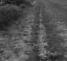 Overcast Footpath  by jaoxley