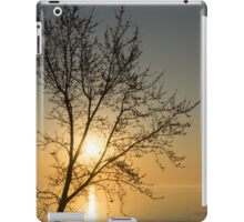 A Filigree of Branches Framing the Sunrise iPad Case/Skin