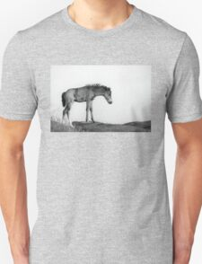 Skinny & Lonely Horse Unisex T-Shirt