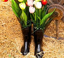 Spring Boots by Rae Tucker