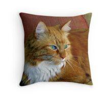 Fluffy Beaux alert.. Throw Pillow