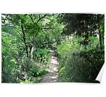 Japanese Hiking Trail Poster