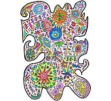 Master Doodle Photographic Print