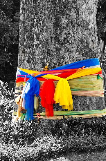 Prayer Tree by Tim Topping