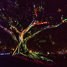 Tree of Life & Colour by Michael Matthews