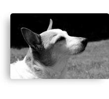 Peaceful thinking black & white Canvas Print