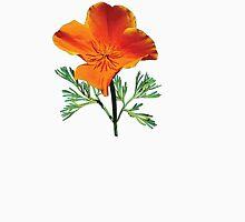 Orange California Poppy Womens Fitted T-Shirt