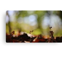 Forest Nymphs Canvas Print
