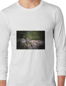 The 4 Corners Swimming Hole Troy Vt Long Sleeve T-Shirt