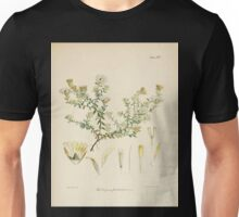 The botany of the Antarctic voyage of H M  discovery ships Erebus and Terror in the Years 1839 1843 Joseph Dalton Hooker V1 019 Unisex T-Shirt