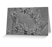 Wet leaf, black and white Greeting Card