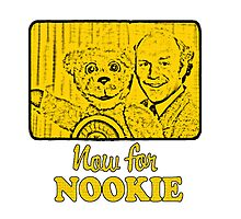 Now For Nookie by JoelCortez