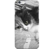 Black and white kitten iPhone Case/Skin