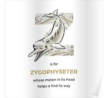 Z is for Zygophyseter Poster