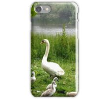 Beautiful Swan with the Cygnets iPhone Case/Skin