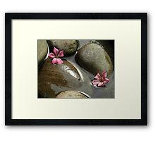 Flowers in the brook Framed Print