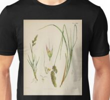 The botany of the Antarctic voyage of H M  discovery ships Erebus and Terror in the Years 1839 1843 Joseph Dalton Hooker V1 119 Unisex T-Shirt