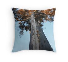 Sugar Gum Throw Pillow