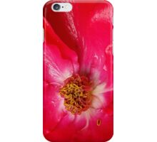 Soaked Rose iPhone Case/Skin
