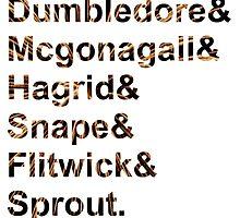 Hogwarts Teachers by aimeedraper