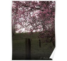 Pastoral Blossoms Poster