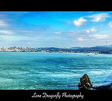 San Francisco Bay by Lonedragonfly