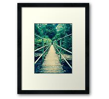 Go explore Framed Print