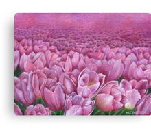 Field of pink tulips Canvas Print
