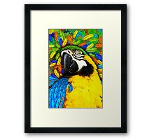 Gold and Blue Macaw Parrot Fantasy Framed Print